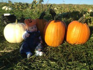 Cutest pumpkin in the patch